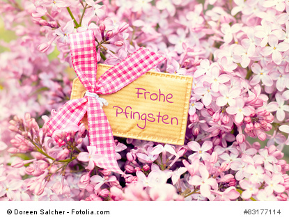 bautiful blossom flower greeting card background - happy pentecost